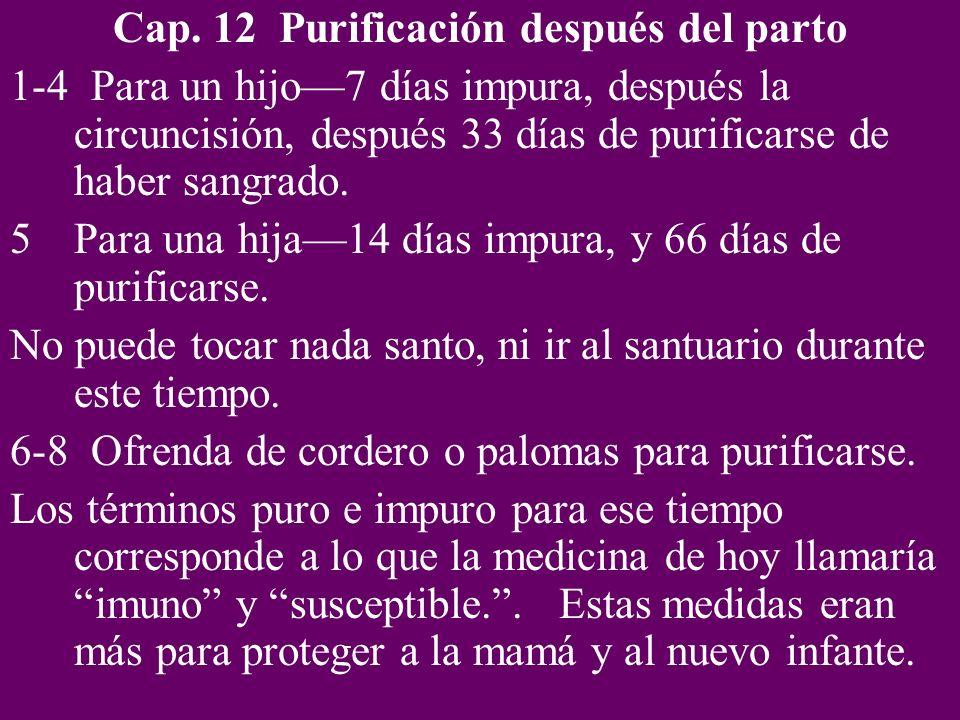Cap. 12 Purificación después del parto