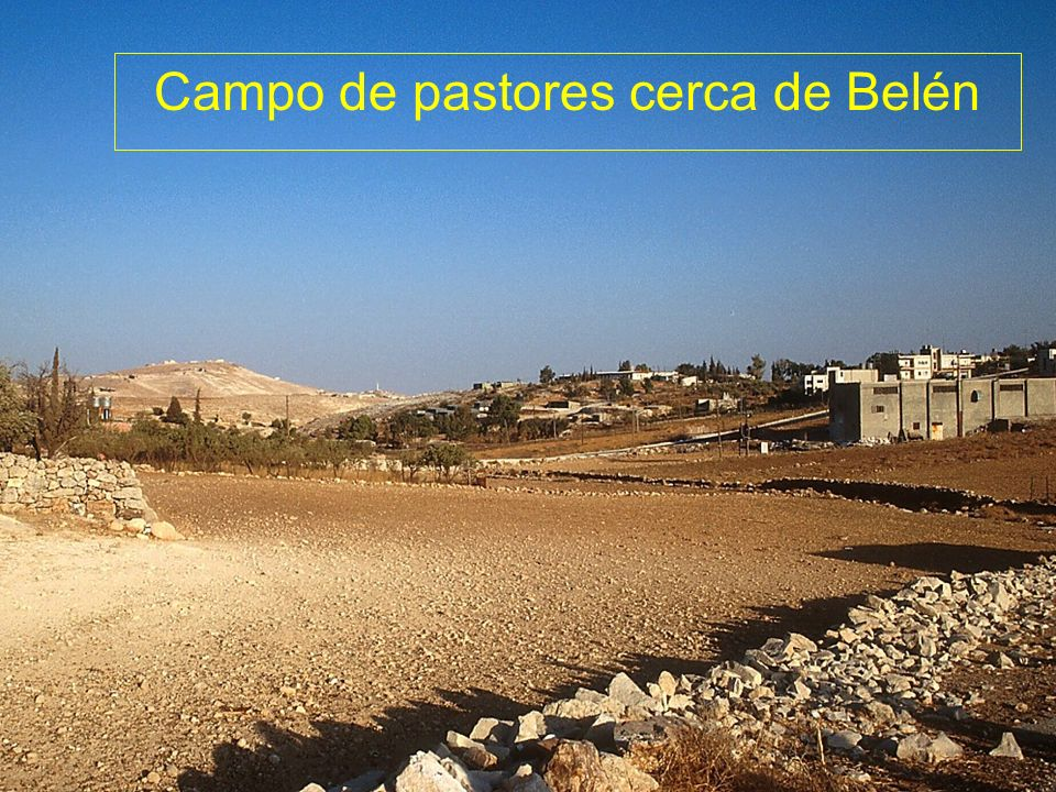 Shepherds Fields near Bethlehem