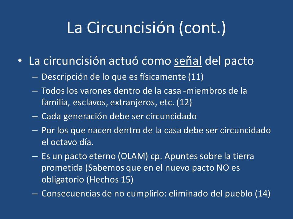 La Circuncisión (cont.)
