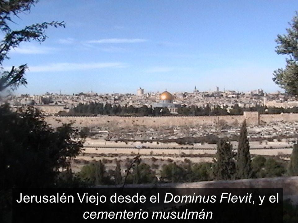 Jerusalén Viejo desde el Dominus Flevit, y el cementerio musulmán