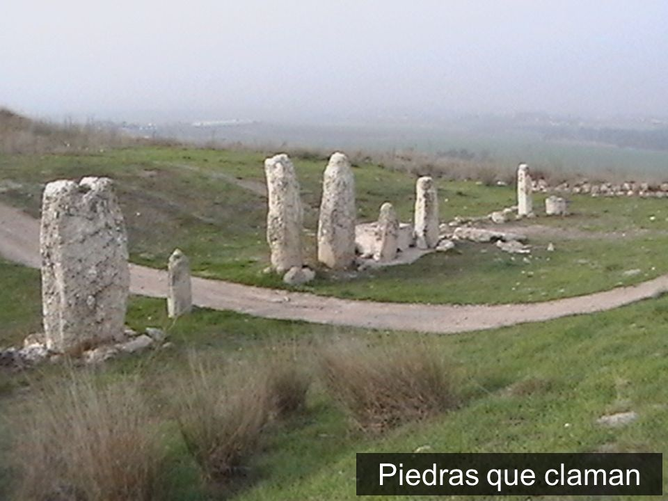 Piedras que claman