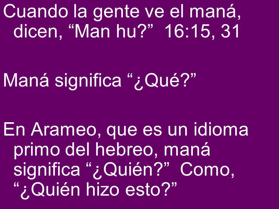 Cuando la gente ve el maná, dicen, Man hu 16:15, 31