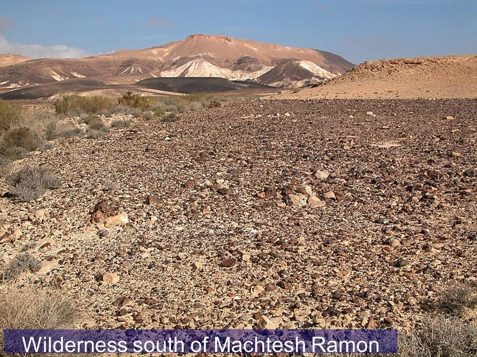 Wilderness south of Machtesh Ramon