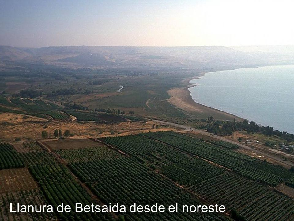 Bethsaida plain aerial from northwest