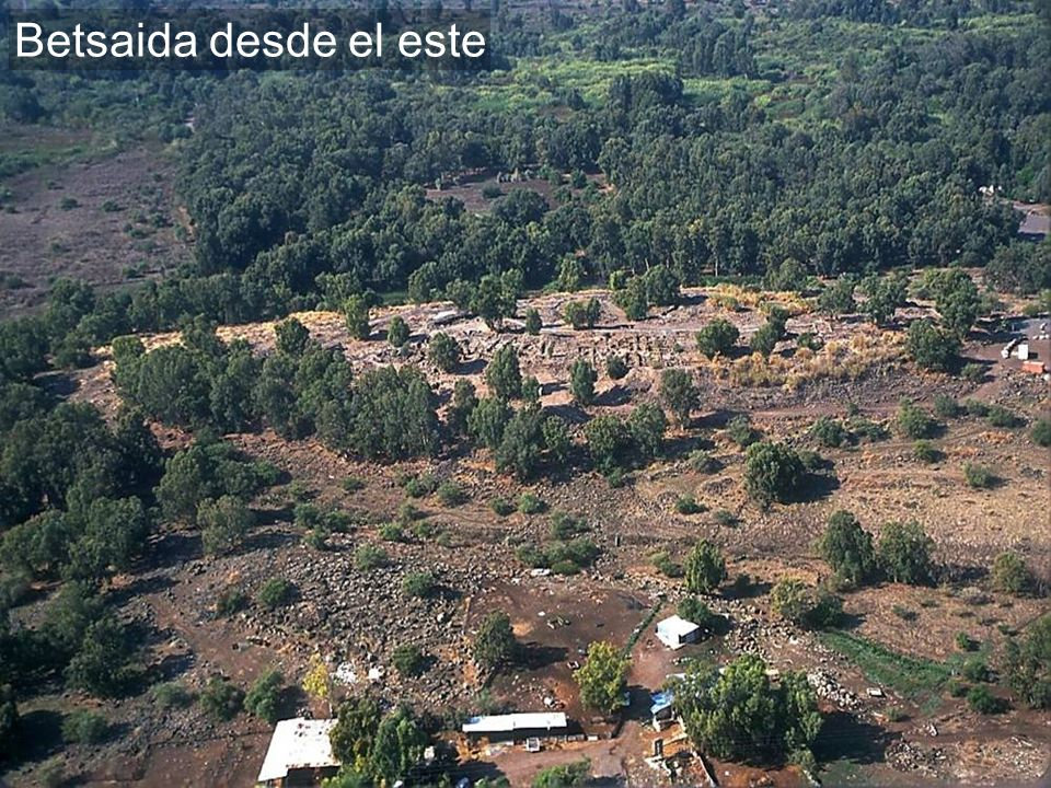 Bethsaida aerial from east
