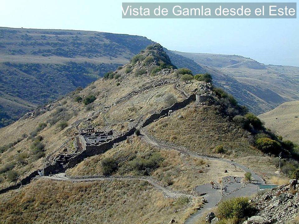 Vista de Gamla desde el Este
