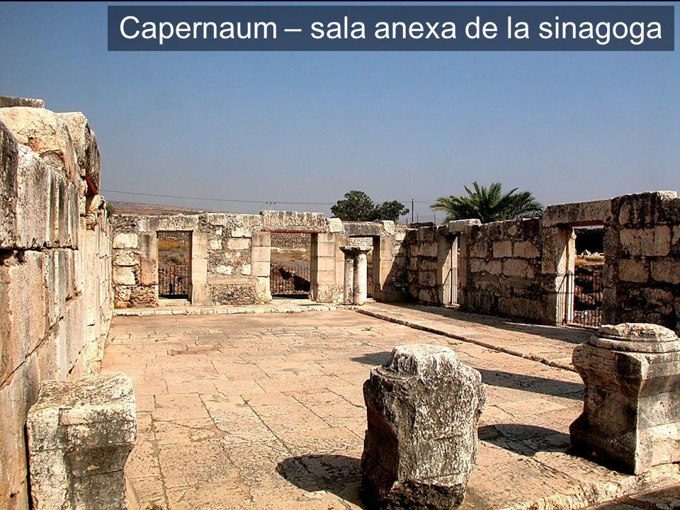 Capernaum synagogue annex room