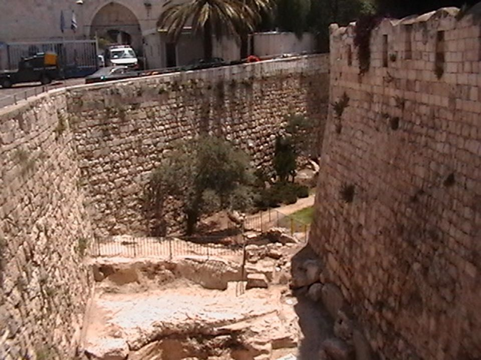 Herod s towers from above