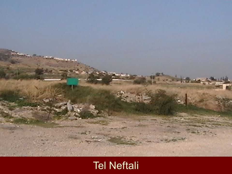 Tel Neftali