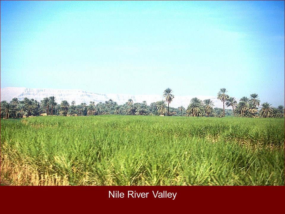 Nile River Valley Nile River Valley