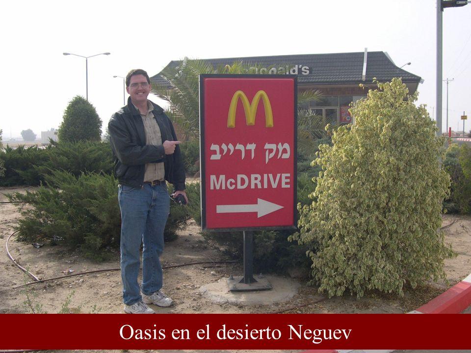 Oasis en el desierto Neguev