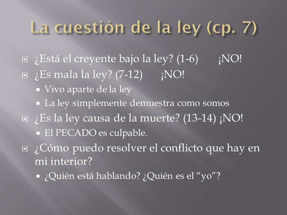 La cuestión de la ley (cp. 7)