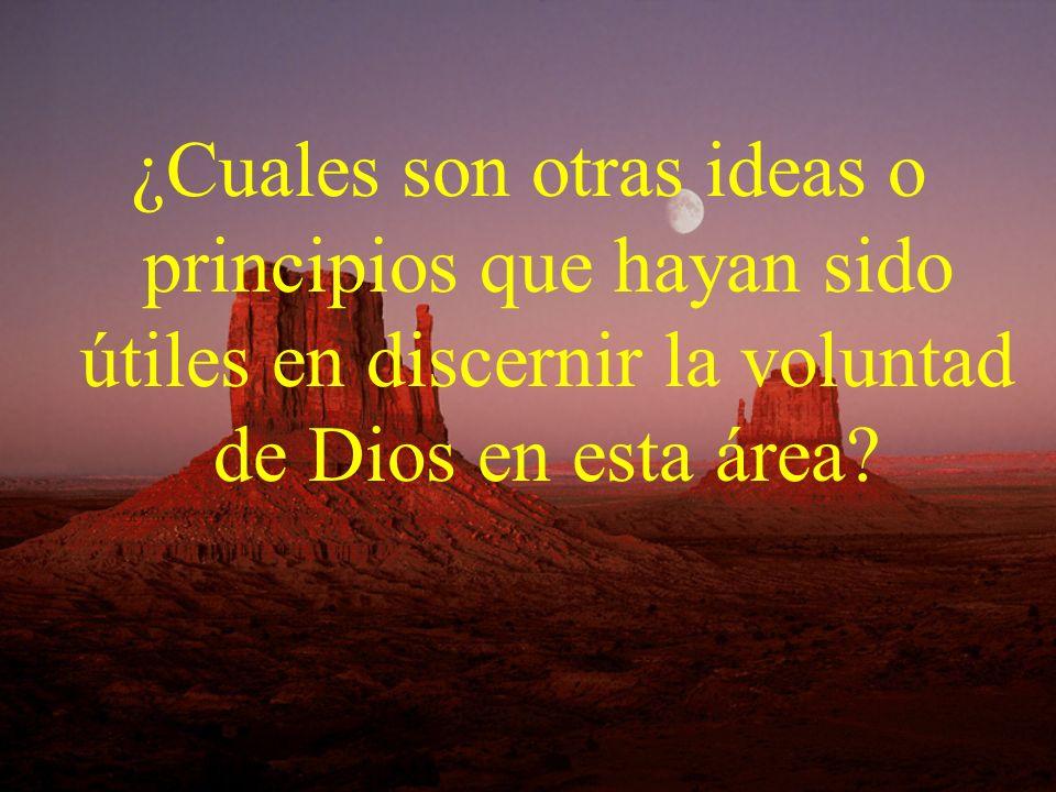 ¿Cuales son otras ideas o principios que hayan sido útiles en discernir la voluntad de Dios en esta área