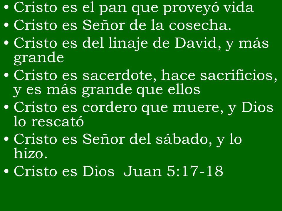 Cristo es el pan que proveyó vida