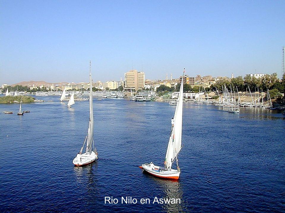 Nile River in Aswan Rio Nilo en Aswan