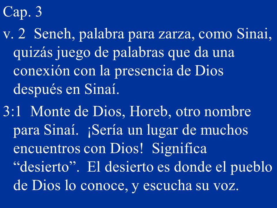 Cap. 3 v. 2 Seneh, palabra para zarza, como Sinai, quizás juego de palabras que da una conexión con la presencia de Dios después en Sinaí.