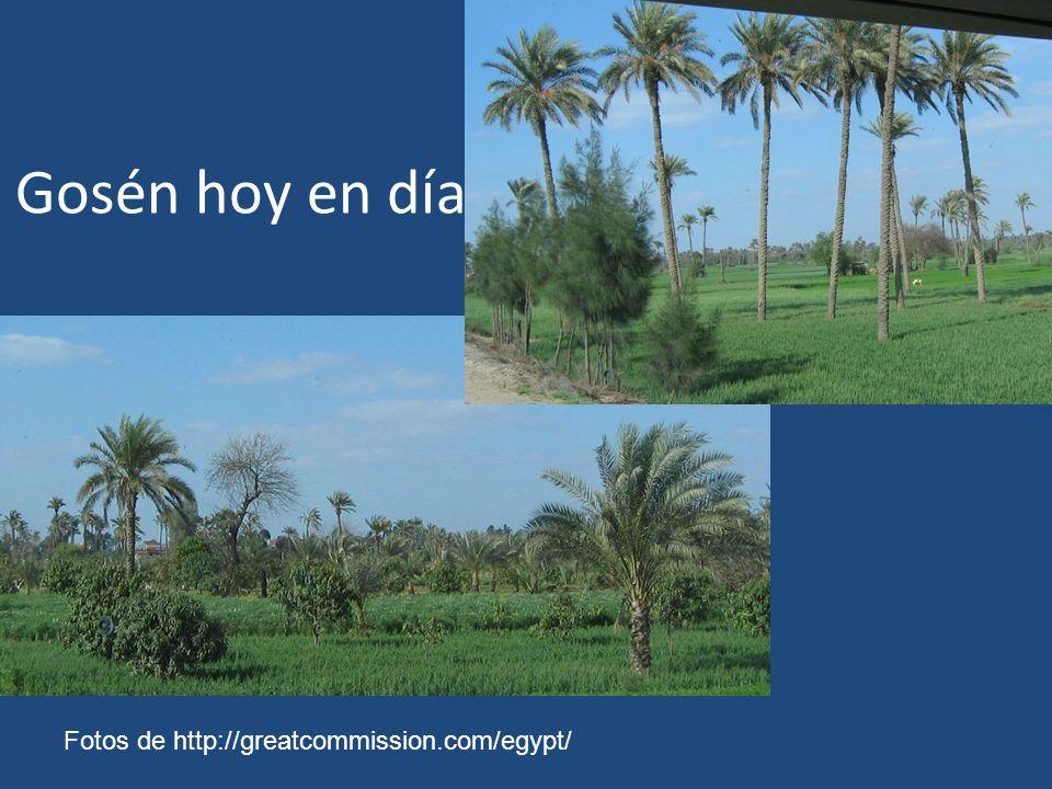 Gosén hoy en día Fotos de http://greatcommission.com/egypt/