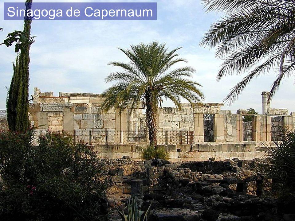 Sinagoga de Capernaum Capernaum synagogue