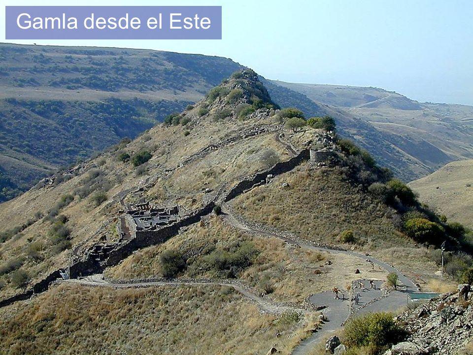Gamla desde el Este Gamla from east The Eastern Wall