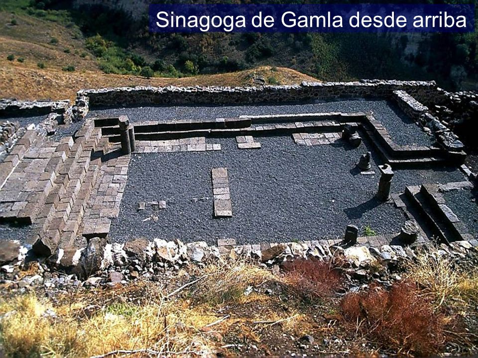 Gamla synagogue from above