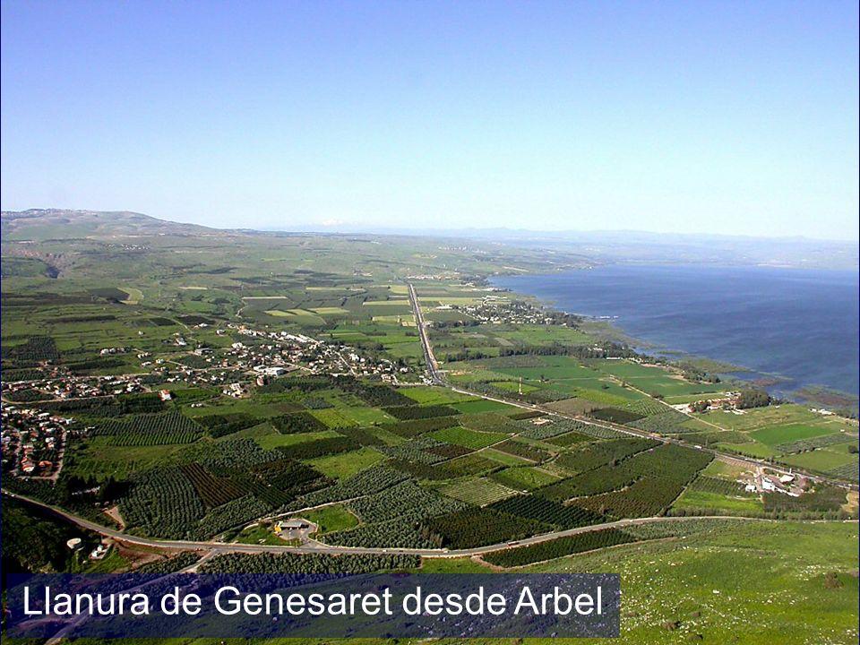 Plain of Gennesaret from Arbel