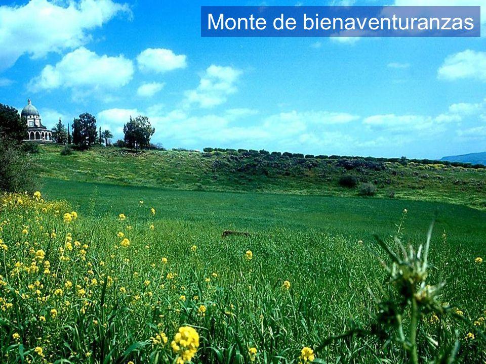 Mount of Beatitudes hillside
