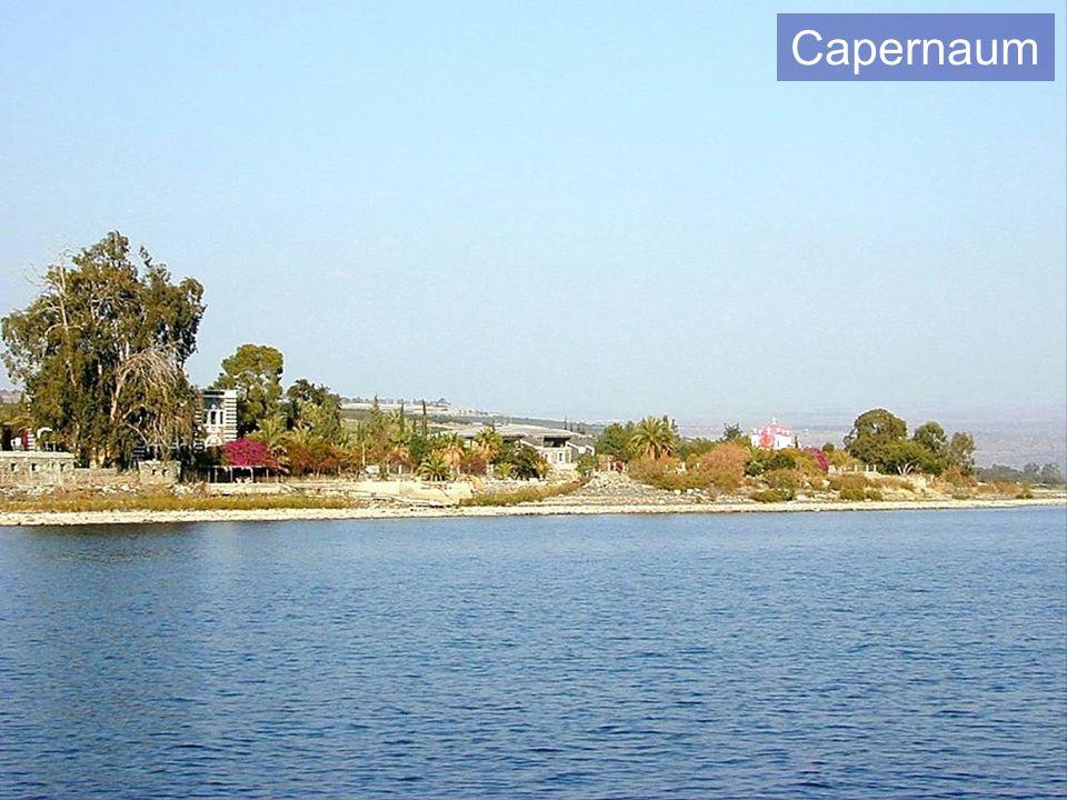 Capernaum Capernaum.