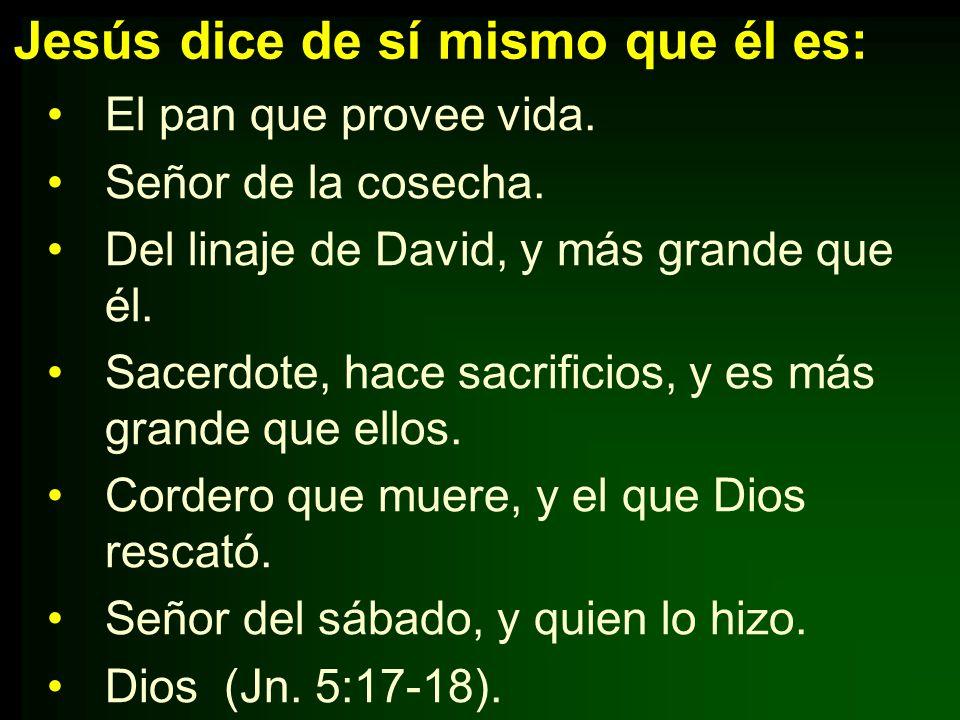 Jesús dice de sí mismo que él es: