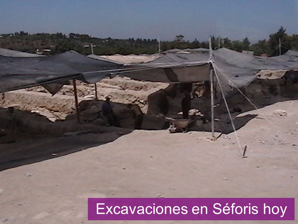 Sepphoris excavation squares
