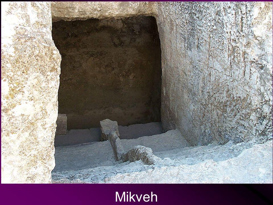 Mikveh Mikveh Ritual Baths