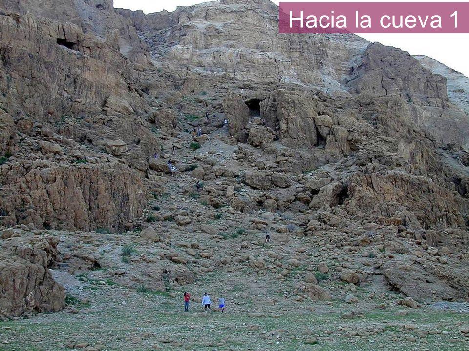Hacia la cueva 1