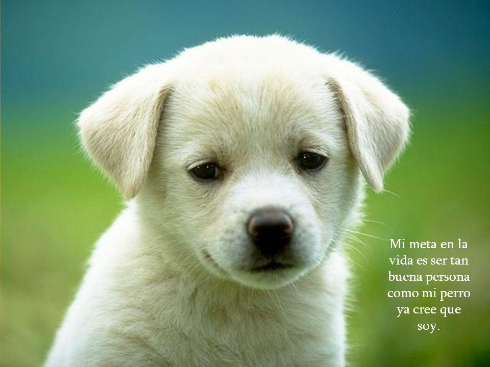 Mi meta en la vida es ser tan buena persona como mi perro ya cree que soy.