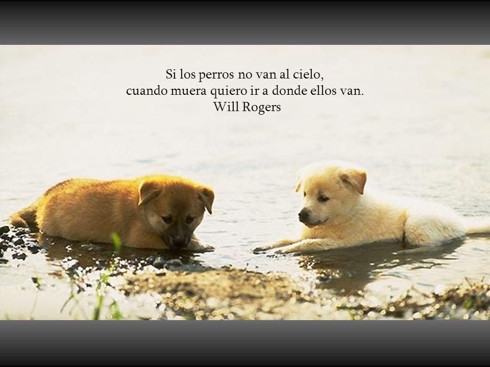 Si los perros no van al cielo, cuando muera quiero ir a donde ellos van.