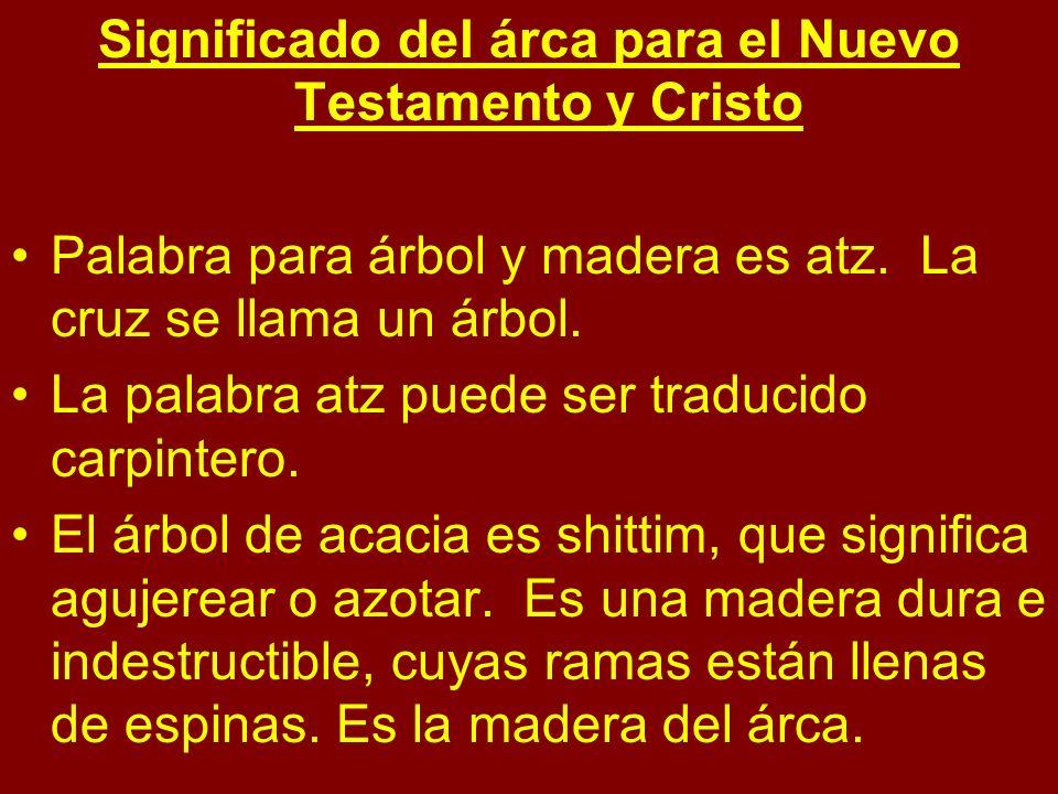 Significado del árca para el Nuevo Testamento y Cristo