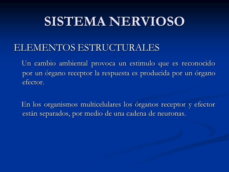SISTEMA NERVIOSO ELEMENTOS ESTRUCTURALES