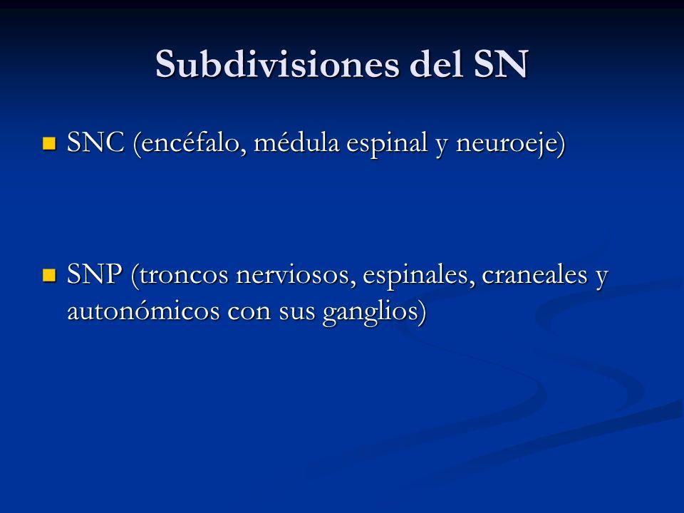 Subdivisiones del SN SNC (encéfalo, médula espinal y neuroeje)