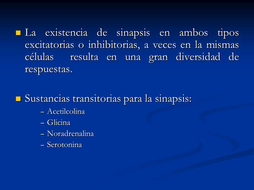Sustancias transitorias para la sinapsis: