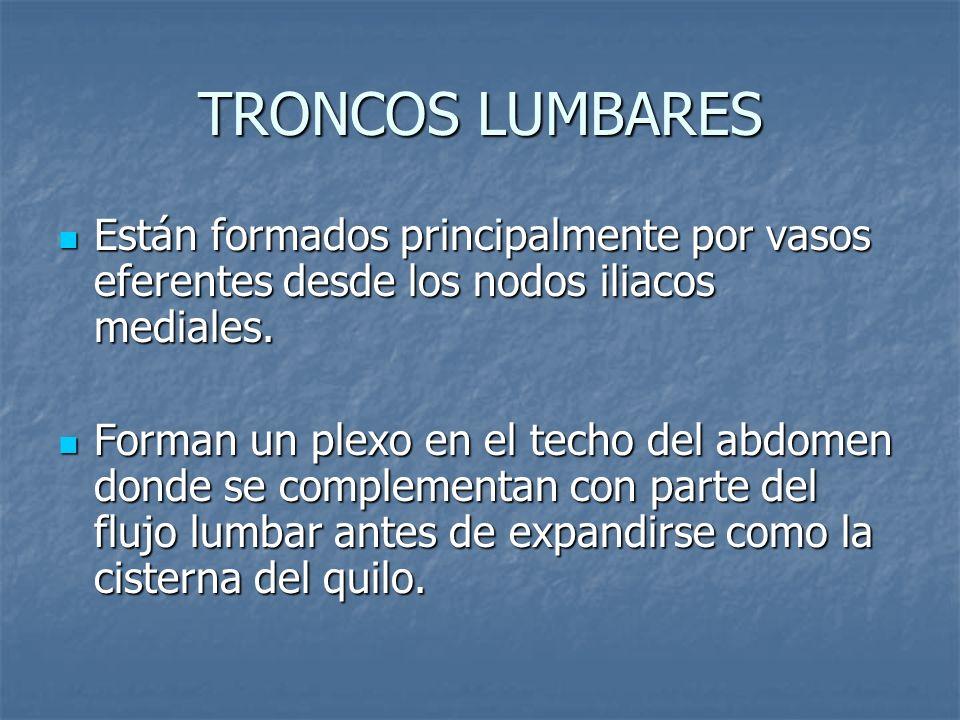 TRONCOS LUMBARES Están formados principalmente por vasos eferentes desde los nodos iliacos mediales.