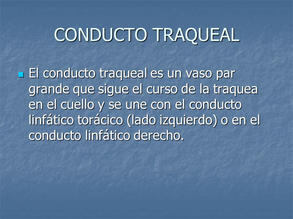 CONDUCTO TRAQUEAL