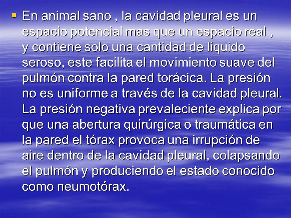 En animal sano , la cavidad pleural es un espacio potencial mas que un espacio real , y contiene solo una cantidad de liquido seroso, este facilita el movimiento suave del pulmón contra la pared torácica.