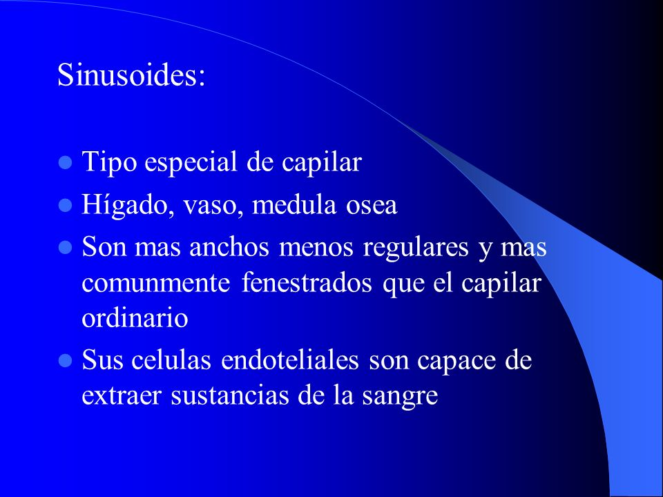 Sinusoides: Tipo especial de capilar Hígado, vaso, medula osea
