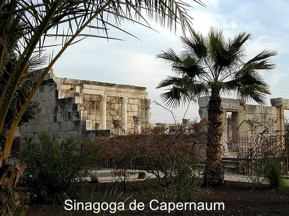 Sinagoga de Capernaum Capernaum synagogue Capernaum Synagogue
