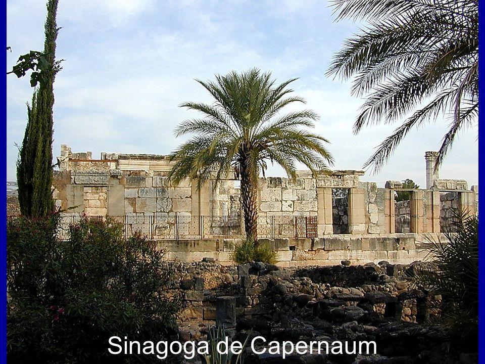 Capernaum synagogue Sinagoga de Capernaum