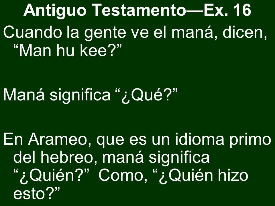 Antiguo Testamento—Ex. 16