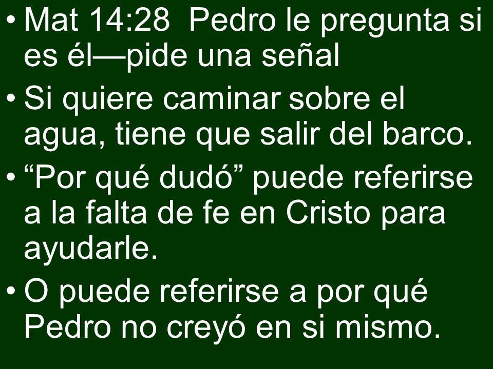 Mat 14:28 Pedro le pregunta si es él—pide una señal