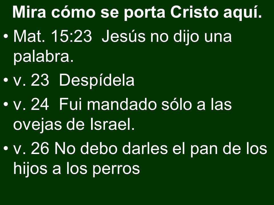 Mira cómo se porta Cristo aquí.