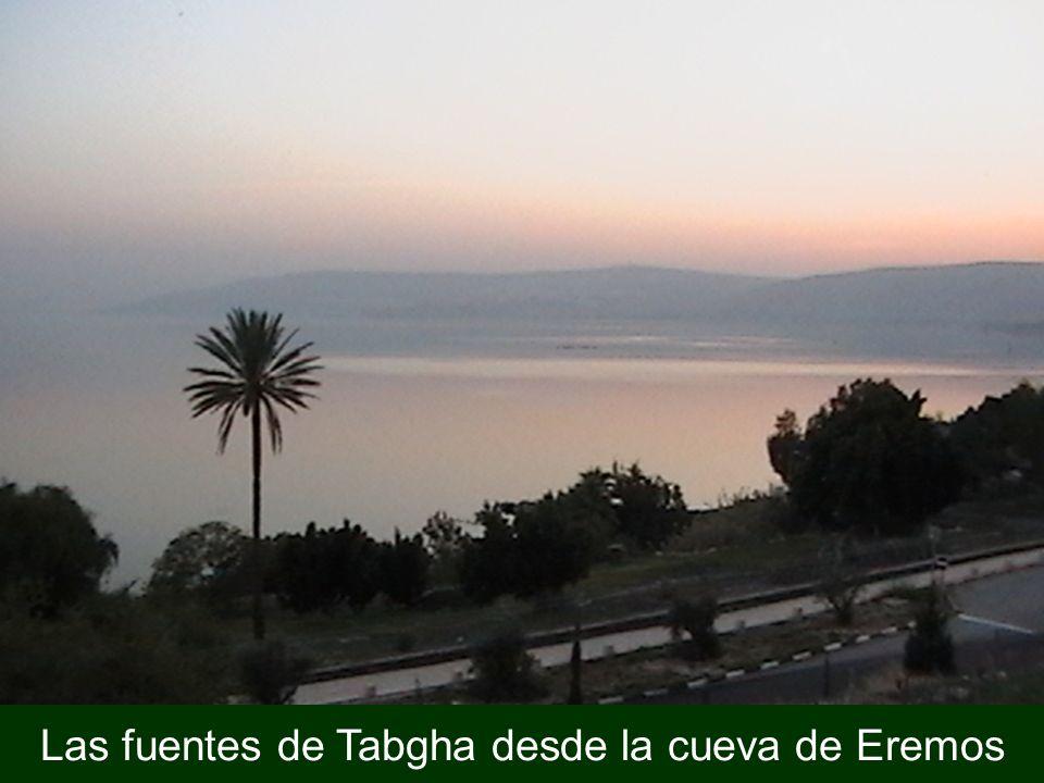 Las fuentes de Tabgha desde la cueva de Eremos