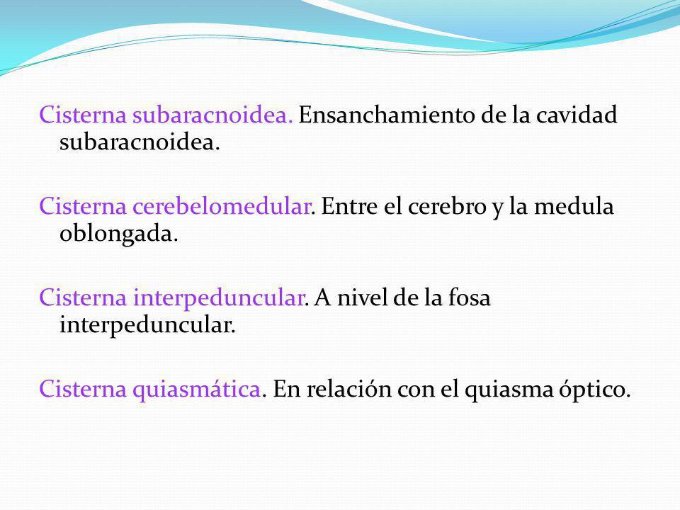 Cisterna subaracnoidea. Ensanchamiento de la cavidad subaracnoidea.