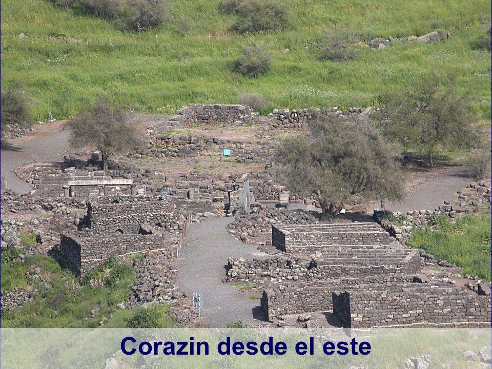 Corazin desde el este Chorazin from west Location of Chorazin