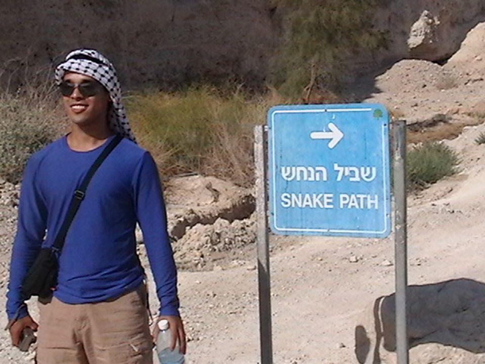 Masada view to Roman tower